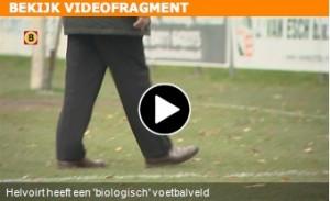 Video-biologisch_voetbalveld_Helvoirt