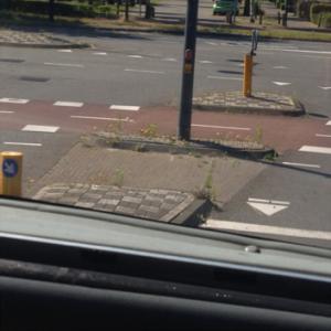 SchoonWater straatwerk met onkruid