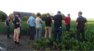 bijeenkomst brabants westhoek suikerbiet schoon water