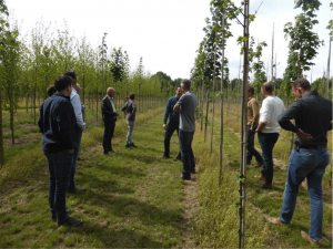 Veldexcursie boomkwekerij Udenhout