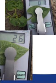 Lage dosering spuiten met MHLD-meter