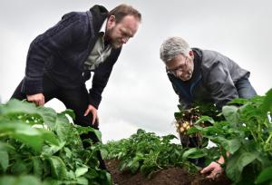 Herman van Bekkem (L) krijgt uitleg over onkruidbestrijding van aardappelteler Dingeman Burgers (R).